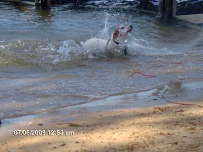 Chasing the wake!!