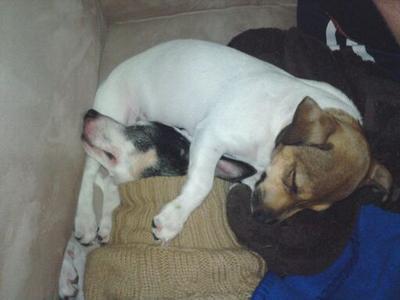 Rozy loves her sister Gigi!!