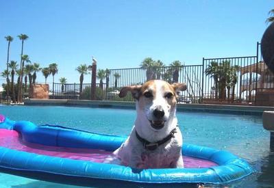 Macho chillin on raft