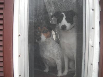 Mom and Dad are leaving us again