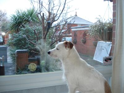 Waiting for the Postman