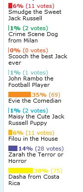 Voting Results for January 2012 Jack Russell Terrier Pictures and Story of the Month