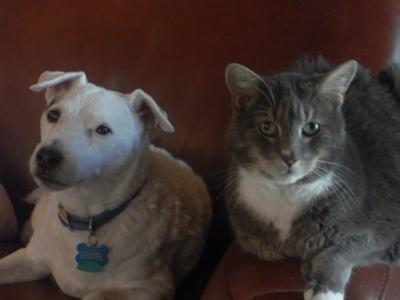 Maxwell and Sammy Best Friends